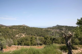 Beautiful old Finca for sale San Juan Ibiza with views over hills & sea