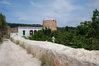 Old 17th Century San Lorenzo Finca on plot of 175,000 m2 plot requiring renovation