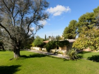 €5,500,000San MateoTraditional Finca with vineyard and country plot
