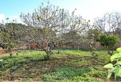 Refurbished country house for sale in San Lorenzo_3