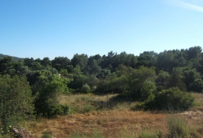 large-120000-square-metre-plot-20-hectares-with-ruin-for-sale-stunning-valley-views-11