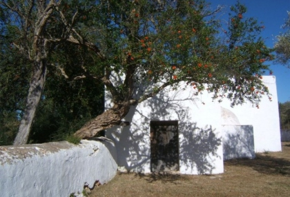 large-120000-square-metre-plot-20-hectares-with-ruin-for-sale-stunning-valley-views-2
