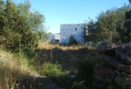 large-120000-square-metre-plot-20-hectares-with-ruin-for-sale-stunning-valley-views-8